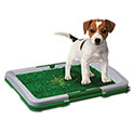 Paws & Pals Grass Pet Potty Trainer - 14.99