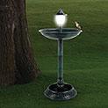 33inch Bird Bath with Solar Lamp - 29.99