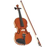 Spectrum Full Size Violin