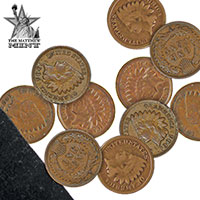 10-Piec Indian Head Penny Set
