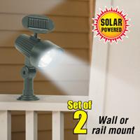 Wall/ Railing Mount Solar Light
