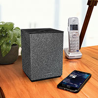 Toshiba Bluetooth Speaker with Google Chromecast