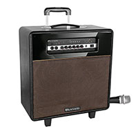Blackmore BRS-2009 Retro Bluetooth PA Speaker