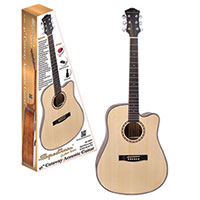 Spectrum Acoustic Guitar with Kit