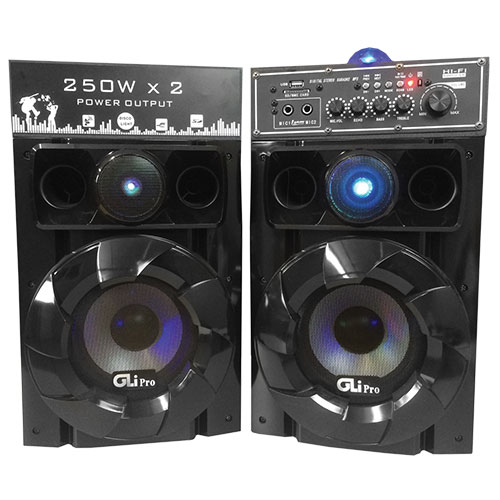 Dual Powered Speakers