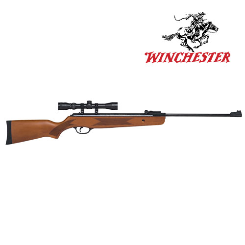Winchester 1250WS Air Rifle