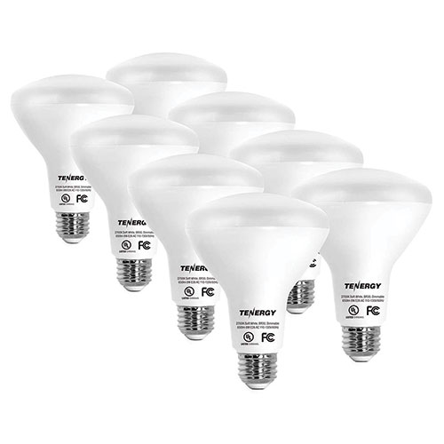 Tenergy Daylight 60W Bulbs - 8 Pack