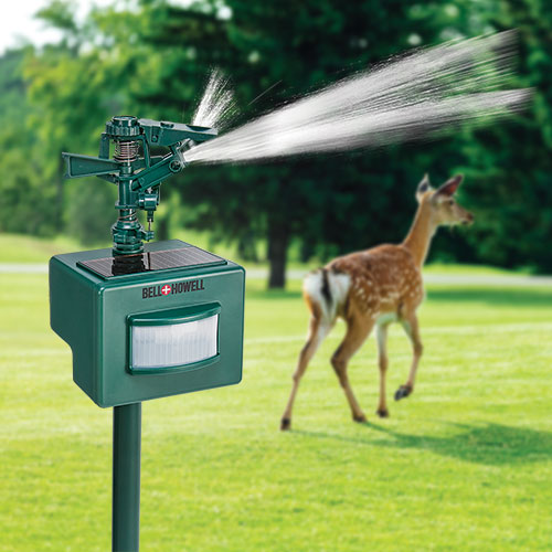 Bell + Howell Solar Water Sprayer Animal Repeller