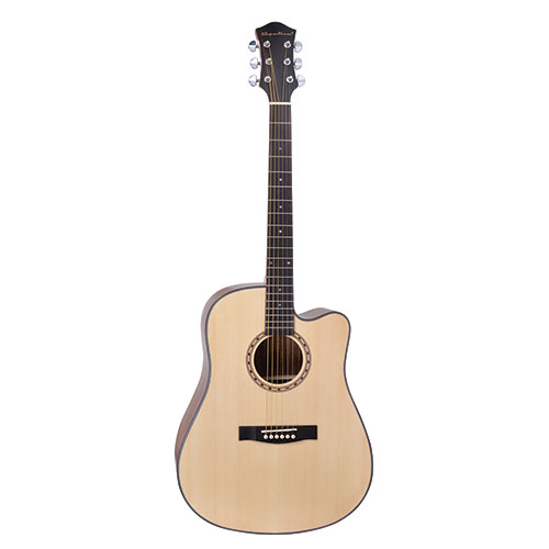 Spectrum FS Acoustic Guitar