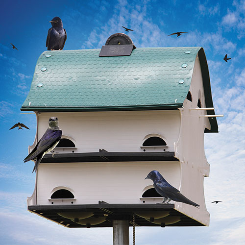 Purple Martin Barn