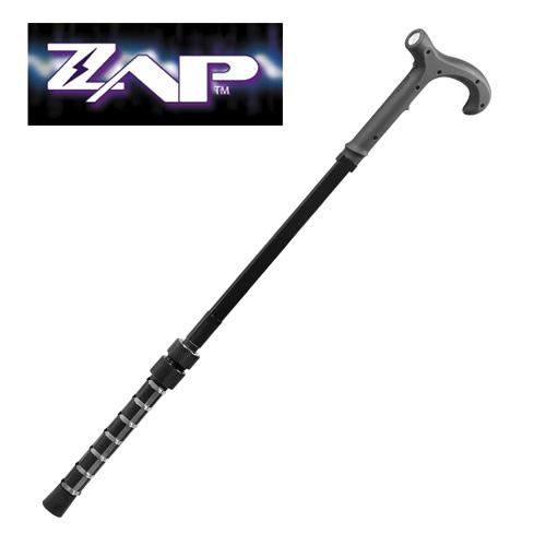 Zap Stun Gun