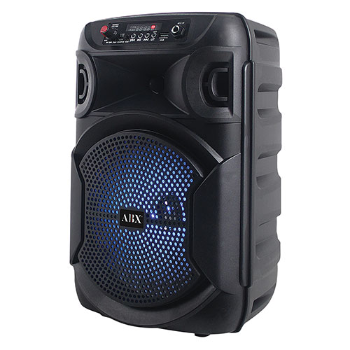 Audiobox 8 inch Portable Bluetooth Party Speaker