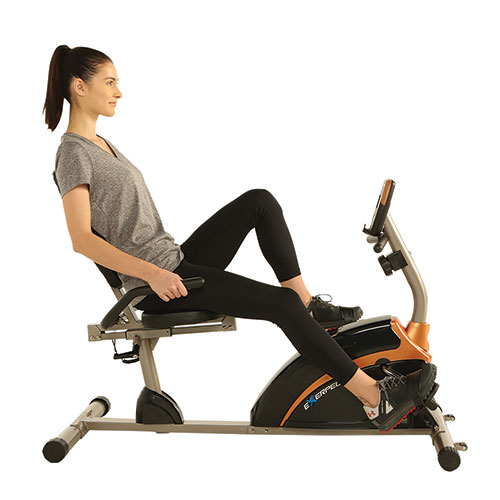 Exerpeutic 4118 Recumbent Bike